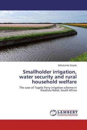 Smallholder irrigation, water security and rural household welfare