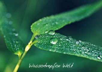 Wassertropfen Welt (Tischaufsteller DIN A5 quer)