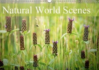 Natural World Scenes (Wall Calendar 2018 DIN A3 Landscape)